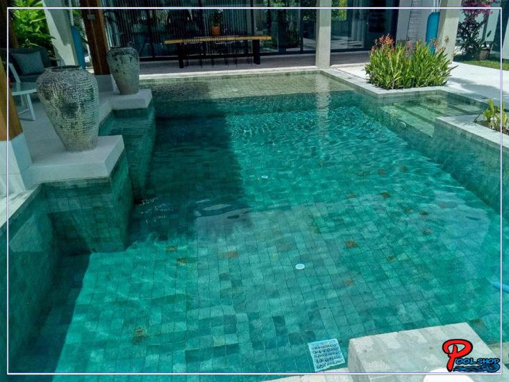 Pool Skimmer System